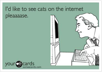 I'd like to see cats on the internet pleaaaase.