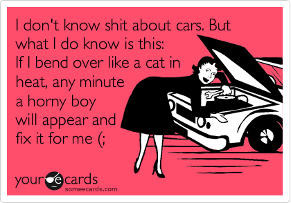 I don't know shit about cars. But what I do know is this: If I bend over like a cat in heat, any minute a horny boy will appear and fix it for me %28;