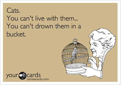 Cats.  You can't live with them... You can't drown them in a bucket.
