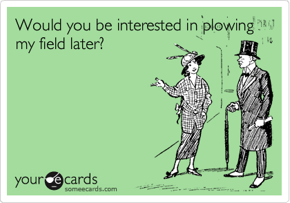 Would you be interested in plowing my field later?