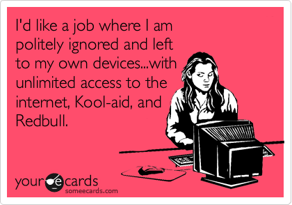 I'd like a job where I am  politely ignored and left to my own devices...with unlimited access to the internet, Kool-aid, and Redbull.