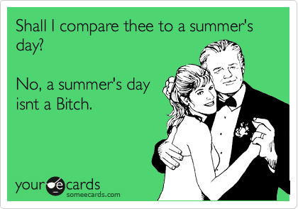 Shall I compare thee to a summer's day?    No, a summer's day isnt a Bitch.