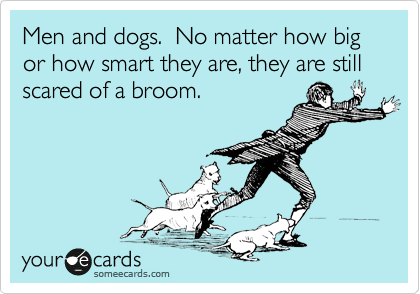 Men and dogs.  No matter how big or how smart they are, they are still scared of a broom.