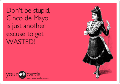 Don't be stupid,   Cinco de Mayo  is just another excuse to get  WASTED!