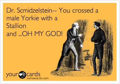 Dr. Scmidzelstein-- You crossed a male Yorkie with a Stallion and ...OH MY GOD!