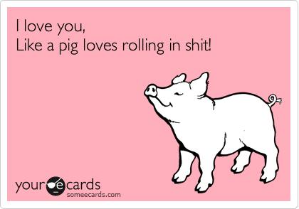 I love you, Like a pig loves rolling in shit!