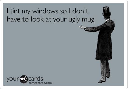 I tint my windows so I don't have to look at your ugly mug