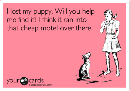 I lost my puppy, Will you help me find it? I think it ran into that cheap motel over there.