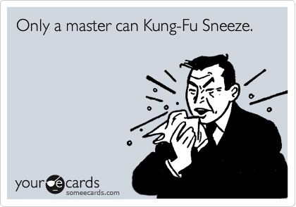 Only a master can Kung-Fu Sneeze.