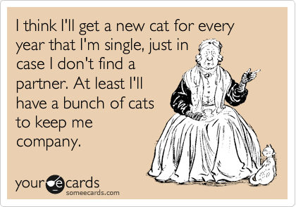 I think I'll get a new cat for every year that I'm single, just in case I don't find a partner. At least I'll have a bunch of cats to keep me company.