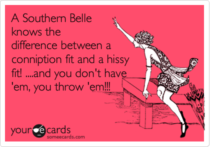 A Southern Belle Knows The Difference Between A Conniption Fit And A