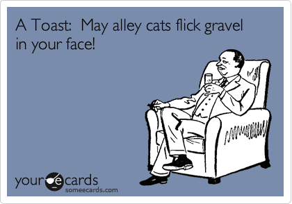 A Toast:  May alley cats flick gravel in your face!