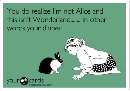 You do realize I'm not Alice and this isn't Wonderland........ In other words your dinner.