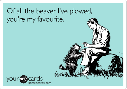 Of all the beaver I've plowed, you're my favourite.