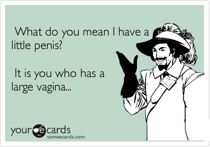 What do you mean I have a little penis?   It is you who has a large vagina...