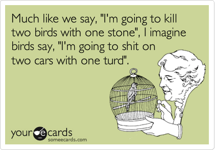 """Much like we say, """"I'm going to kill two birds with one stone"""", I imagine birds say, """"I'm going to shit on two cars with one turd""""."""