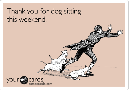 Thank you for dog sitting this weekend.