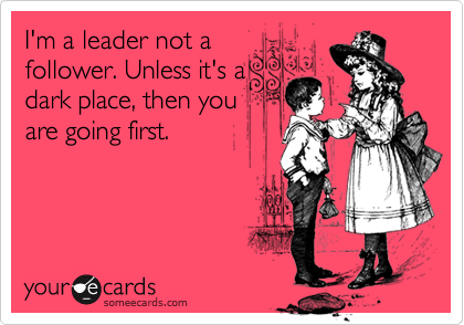 I'm a leader not a follower. Unless it's a dark place, then you are going first.