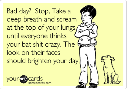 Bad day?  Stop, Take a deep breath and scream  at the top of your lungs until everyone thinks your bat shit crazy. The  look on their faces should brighten your day