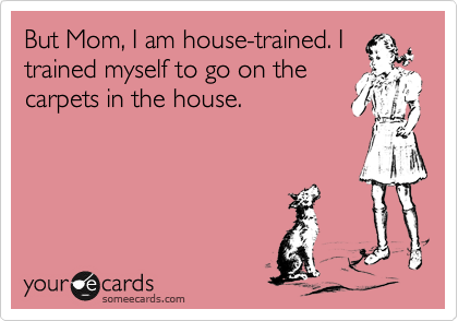But Mom, I am house-trained. I trained myself to go on the carpets in the house.