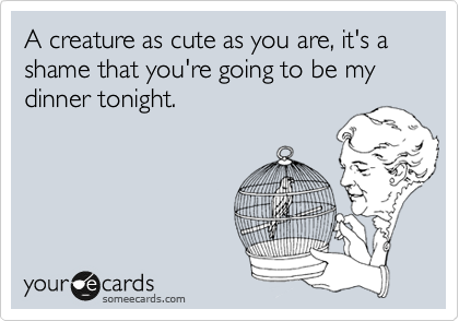 A creature as cute as you are, it's a shame that you're going to be my dinner tonight.