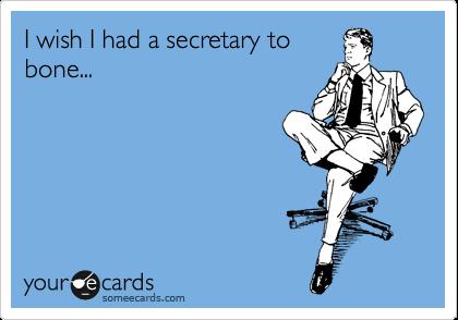 I wish I had a secretary to bone...