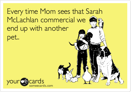 Every time Mom sees that Sarah McLachlan commercial we end up with another pet..