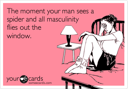 The moment your man sees a spider and all masculinity flies out the window.