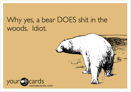 Why yes, a bear DOES shit in the woods.  Idiot.