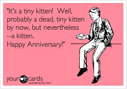 """It's a tiny kitten!  Well, probably a dead, tiny kitten by now, but nevertheless --a kitten. Happy Anniversary!"""