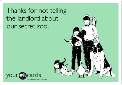 Thanks for not telling the landlord about our secret zoo.