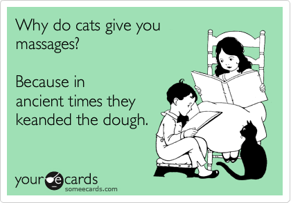 Why do cats give you massages?    Because in ancient times they keanded the dough.