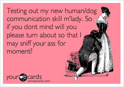 Testing out my new human/dog communication skill m'lady. So if you dont mind will you please turn about so that I may sniff your ass for moment?