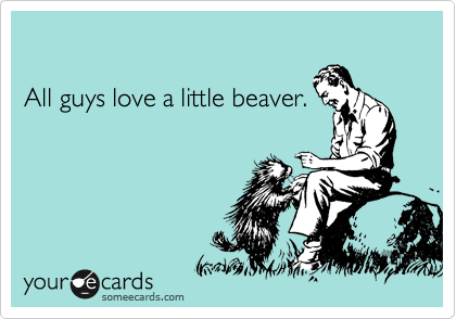 All guys love a little beaver.