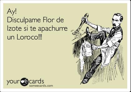 Ay!   Disculpame Flor de Izote si te apachurre  un Loroco!!!