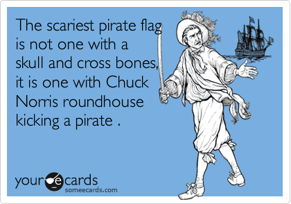 The scariest pirate flag  is not one with a  skull and cross bones, it is one with Chuck  Norris roundhouse  kicking a pirate .