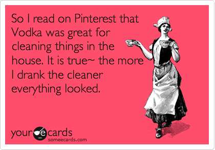 So I read on Pinterest that Vodka was great for cleaning things in the house. It is true%7E the more I drank the cleaner everything looked.