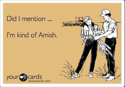 Did I mention ....  I'm kind of Amish.