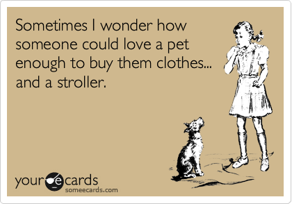 Sometimes I wonder how  someone could love a pet enough to buy them clothes... and a stroller.