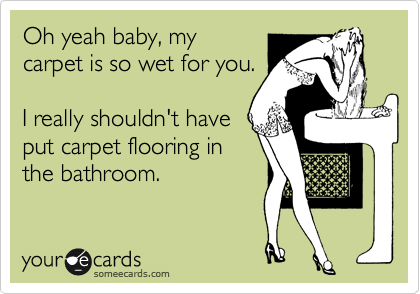 Oh yeah baby, my carpet is so wet for you.  I really shouldn't have put carpet flooring in the bathroom.