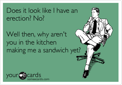 Does it look like I have an  erection? No?  Well then, why aren't you in the kitchen making me a sandwich yet?