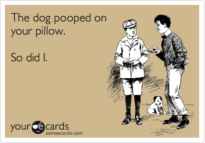The dog pooped on your pillow.  So did I.