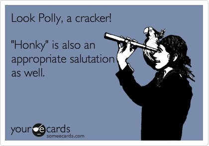 """Look Polly, a cracker!  """"Honky"""" is also an appropriate salutation as well."""