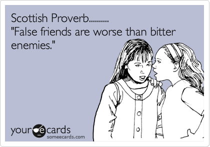 """Scottish Proverb.......... """"False friends are worse than bitter enemies."""""""