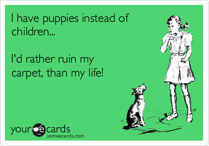 I have puppies instead of children...    I'd rather ruin my carpet, than my life!