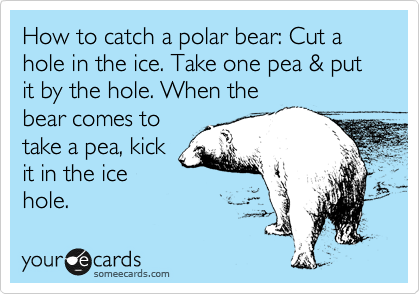 How to catch a polar bear: Cut a hole in the ice. Take one pea & put it by the hole. When the bear comes to take a pea, kick it in the ice hole.