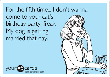 For the fifth time... I don't wanna come to your cat's birthday party, freak. My dog is getting married that day.
