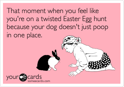 That moment when you feel like you're on a twisted Easter Egg hunt because your dog doesn't just poop in one place.