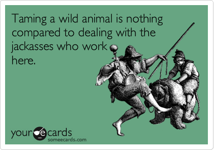 Taming a wild animal is nothing compared to dealing with the jackasses who work here.