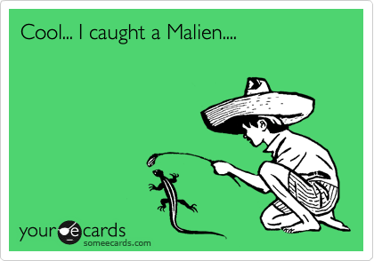 Cool... I caught a Malien....